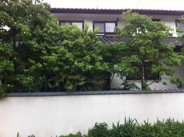 外壁塗装 長野市小市